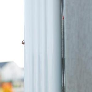 ladybugs-43